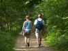 woodland_walk_18363