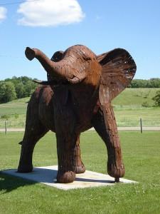 Nyberg Elephant